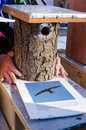 Seller hands handmade bird house nesting box market hold made of tree trunk and photo for it Royalty Free Stock Image