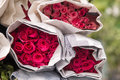 Selling flowers - A bouquet of red / pink roses wrapped in paper Royalty Free Stock Photo