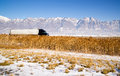 Semi Truck Speeding down Utah Highway Winter Wasatch Mountains Royalty Free Stock Photo