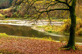 Semois river in autumn view on a curve the the gaume region of the belgian ardennes Royalty Free Stock Photos