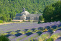 Senanque abbey, provence, france Royalty Free Stock Photography