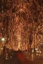 Sendai December illumination festival Royalty Free Stock Photo