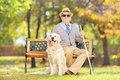 Senior blind gentleman sitting on a bench with his dog in a par wooden labrador retriever park Royalty Free Stock Images