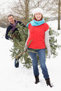 Senior Couple Carrying Christmas Tree In Snow Stock Image