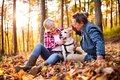 Senior couple with dog on a walk in an autumn forest. Royalty Free Stock Photo