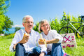 Senior couple eating and drinking at picnic in summer Royalty Free Stock Photo