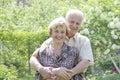 Senior couple enjoying in park Royalty Free Stock Photo