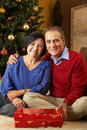 Senior Couple In Front Of Christmas Tree Royalty Free Stock Photos
