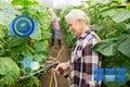 Senior couple with garden hose at farm greenhouse