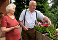 Senior couple gardening Royalty Free Stock Photos