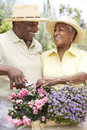 Senior Couple Gardening Together Stock Image