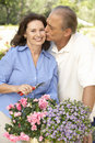 Senior Couple Gardening Together Stock Photo