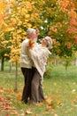 Senior couple lying on green grass Royalty Free Stock Photo