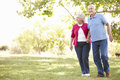 Senior couple in park Royalty Free Stock Photo
