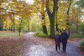Senior couple park autumn time Royalty Free Stock Images