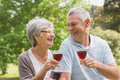 Senior couple toasting wine glasses at park Stock Image