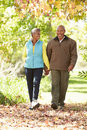 Senior couple walking through autumn woodland smiling Stock Photos