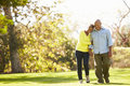Senior couple walking through autumn woodland smiling Royalty Free Stock Photography