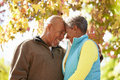 Senior couple walking through autumn woodland smiling at each other Royalty Free Stock Image