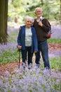 Senior Couple Walking Through Bluebell Wood Royalty Free Stock Photo