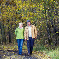 Senior couple walking in park Royalty Free Stock Photography