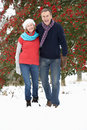 Senior Couple Walking Through Snowy Woodland Royalty Free Stock Images