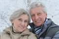 Senior couple in winter happy walking outdoors Royalty Free Stock Image