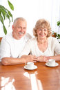 Senior elderly couple Royalty Free Stock Photography