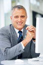 Senior executive business man Royalty Free Stock Image