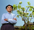 Senior farmer with an apple tree a baby in a sunny day Stock Images