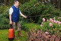 Senior florist working in the garden Royalty Free Stock Photo