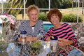Senior friends playing cards Royalty Free Stock Photo
