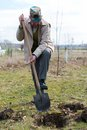 Senior gardener with a spade in the garden Royalty Free Stock Photography