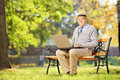 Senior gentleman working on laptop seated on bench in park wooden looking at camera Stock Photo
