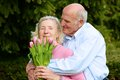 Senior husband giving bouquet of tulips to his wife happy loving caring couple outdoors a men pink beautiful Stock Photos