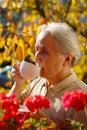 Senior Lady Drinking Tea Royalty Free Stock Photo