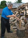 Senior log splitter man with an axe split firewood logs Royalty Free Stock Image