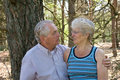 Senior love Royalty Free Stock Photography