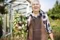 Senior man with crops Royalty Free Stock Photo