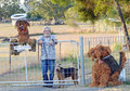 Senior man fence gate dog hay sculptures a casually dressed country standing with his arms over the front steel of his home with Royalty Free Stock Images