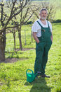 Senior man gardening in his garden Stock Image