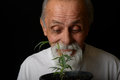 Senior man grows marijuana nice happy image of a who his own medicine Stock Image