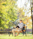 Senior man with hat sitting on a bench and reading a novel in a wooden park shot tilt shift lens Royalty Free Stock Photo
