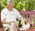 Senior man with his dog old cuddling on bench in garden Stock Images