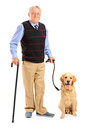 Senior man holding a cane and a dog Royalty Free Stock Images