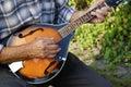 Senior man playing mandolin outside on the green background Stock Photo