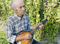 Senior man playing mandolin outside on the green background Stock Photos