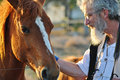 Senior man stroking big horse portrait close up Royalty Free Stock Photo