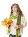 Senior old man holding autumn yellow maple leaves happy over white background Stock Photos