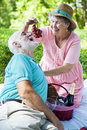 Senior Picnic - Romance Royalty Free Stock Photography